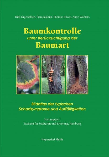 Baumkontrolle unter Berücksichtigung derBaumart