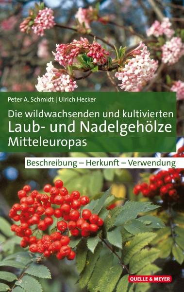 Buch Die wildwachsenden und kultivierten Laub- und Nadelgehölze Mitteleuropas