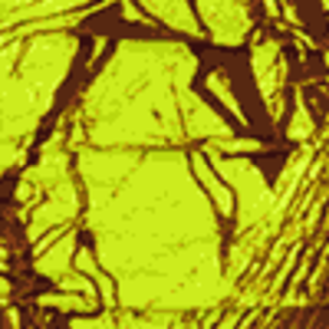 Camouflage neongul