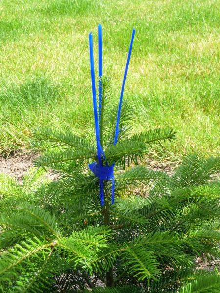PlantaGard Cactus Pro