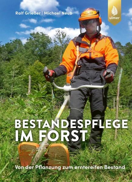 Bestandespflege im Forst