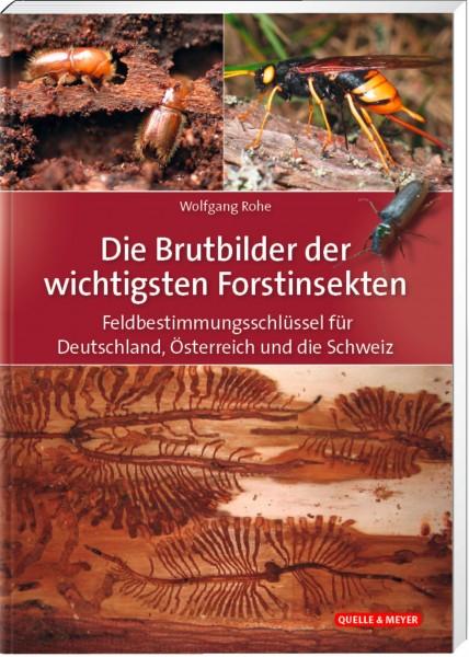 Buch Die Brutbilder der wichtigsten Forstinsekten