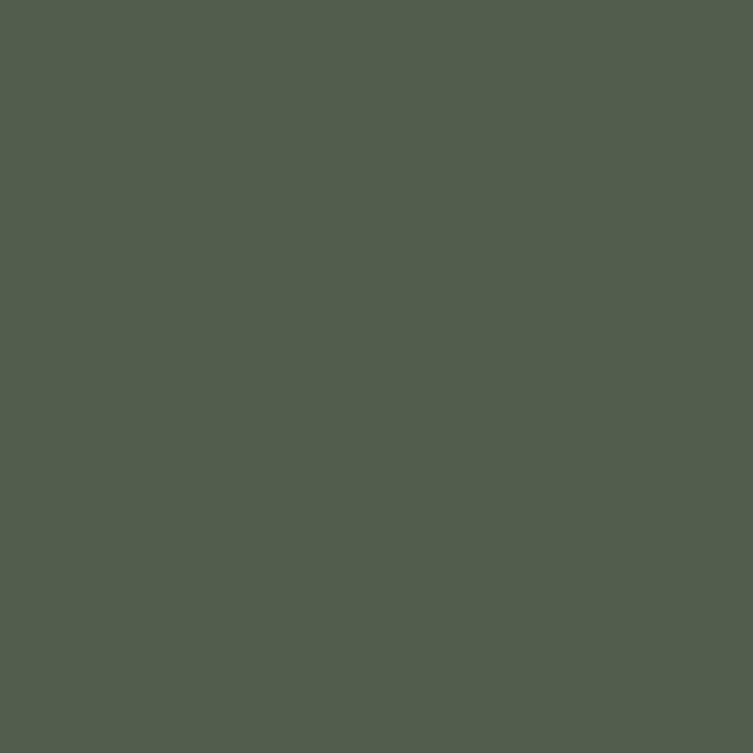Oliv/neongelb